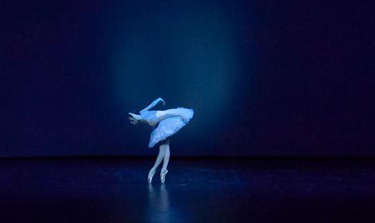 suelo linóleo danza contemporánea
