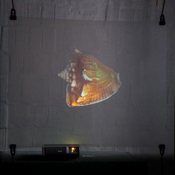 Lamina proyección holográfica